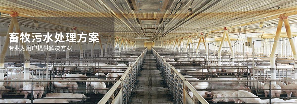 畜牧污水解決方案